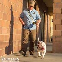Enlighten Dog Training