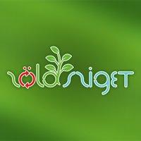 Zöld Sziget - Háztartás újratervezve