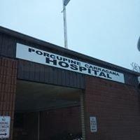 Porcupine Carragana Hospital