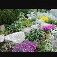 Green Dot Landscapes, LLC