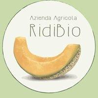 Azienda Agricola Ridibio