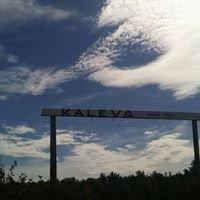 Kaleva of Red Lodge