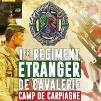1er Régiment Etranger de Cavalerie