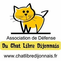 Chat-Libre Dijonnais