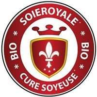 HBS France Soie Royale Cure Soyeuse