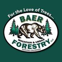 Baer Mountain & Urban Forestry