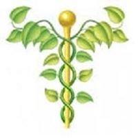 Allergy and Arthritis Alternatives for Pets - Sheila Snodgrass DVM CVA