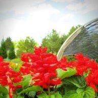 York Garden Products
