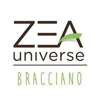ZEA Universe