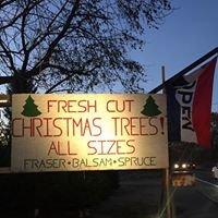 Littleton Christmas Trees