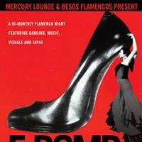Studio Flamenco Juliana Pulford
