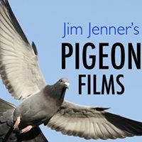 Pigeon Films