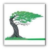 Cedar Laine Restoration