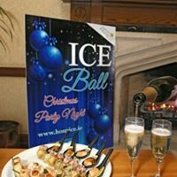 ICE Ball Christmas Party Night