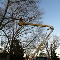 Unlimited tree service
