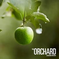 The Orchard Studio