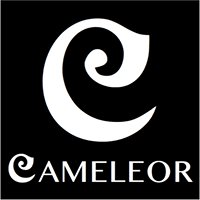 Cameleor by Nathalie Mattheeuws - Créatrice en joaillerie