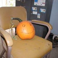 Aye Pumpkin Patch