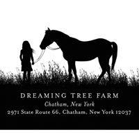 Dreaming Tree Farm