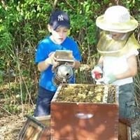 Everything Honey Bee, Inc.