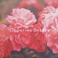 Counting Sheets