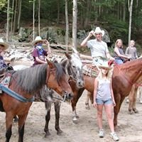 Ruggiero's Public Horseback Riding and Cabin rentals