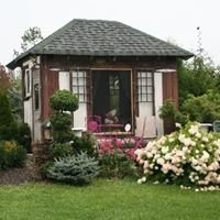 Cuttle Cottage Lavender