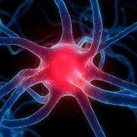 Neurofeedback Solutions