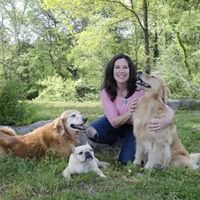 Healthy Petz Dog Training