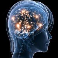 Braincore of the Carolinas  -   Dr. Tamara Lockhart