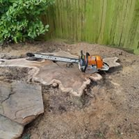 S.Wadey Tree Surgery & fencing