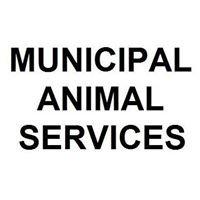 Municipal Animal Services