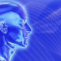 The Cyber Fusion, Inc