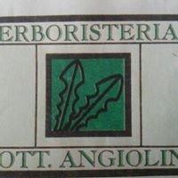 Erboristeria Dott. Angiolini