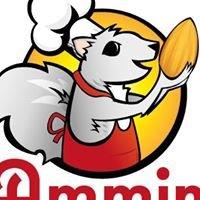 Ammin Nut Company