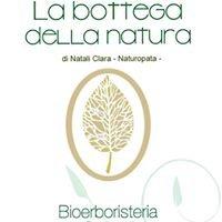 Bioerboristeria La Bottega della Natura - Gallipoli