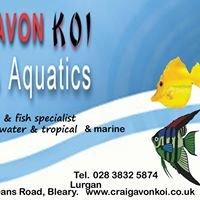 Craigavon Koi & Aquatics