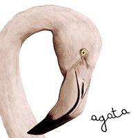 AGATA cruelty-free Room & Breakfast