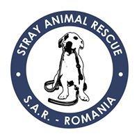 Stray Animal Rescue