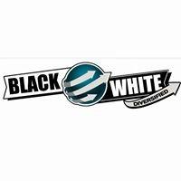 BLACK AND WHITE DIVERSIFIED - remodelación y construcción