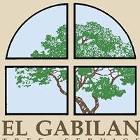 El Gabilan Tree Service
