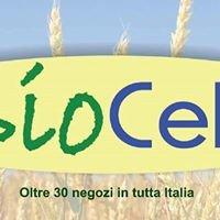 Biocelia Chiari