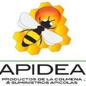 Apidea