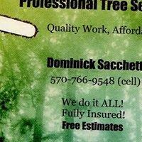 Sacchetti Tree Service