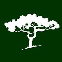 Byers Tree Service