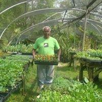 Greenhand Nursery