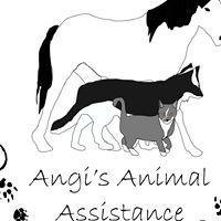 Angis Animal Assistance