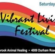 Vibrant Living Festival