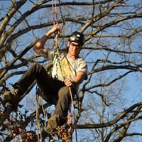 Advanced Arborist Solutions