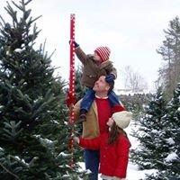 Holiday Creek Tree Farm  Plover, Wisconsin